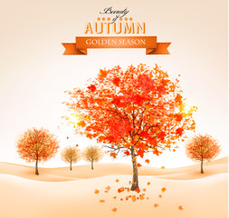 Autumn background with colorful leaves and trees. Vector illustr