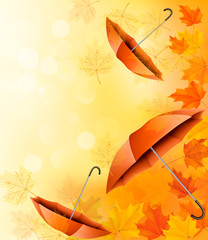 Autumn background with autumn leaves and orange umbrellas. Vecto