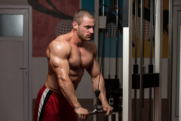 Male Bodybuilder Doing Heavy Weight Exercise For Triceps