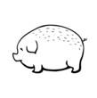 pig, vector sketch illustration