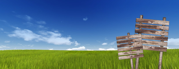 Wood sign in green grass on sky background
