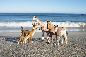Miniature animals lined up in the seaside