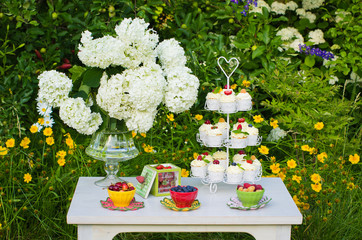 Dessert table in a garden