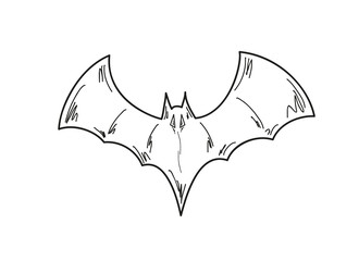 sketch of the bat