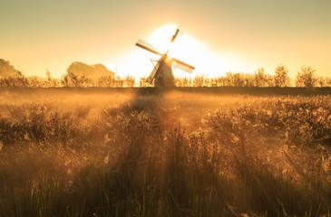 Foggy autumn sunrise near a windmill.