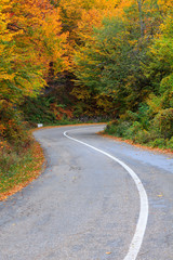 Autumn road in Transylvania