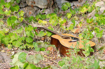 Acoustic guitar on nature