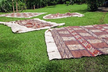 Tongan tapas drying on the grass