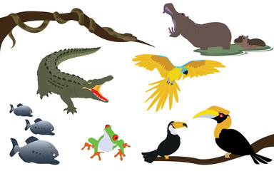 Forest Jungle and River Animals Wildlife