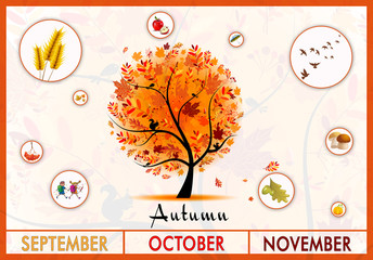 Autumn Tree Educational Poster