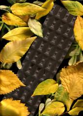 Chocolate autumn