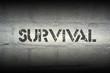 Постер, плакат: survival