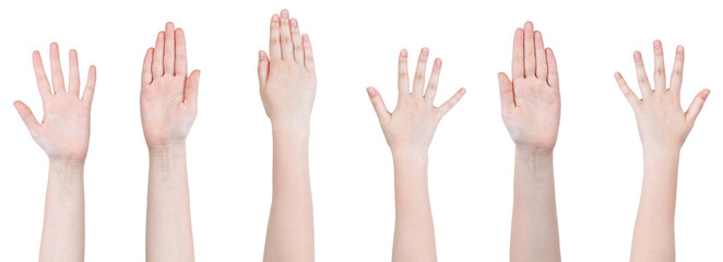 set of female hands with five fingers gesture