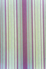 Background texture of a curtain with green vertical lines