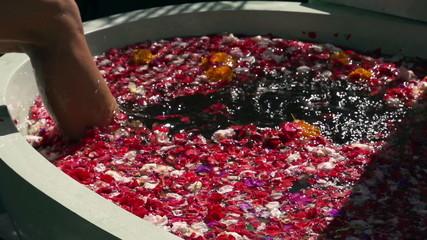 Woman putting leg into bath full of flowers, slow motion shot