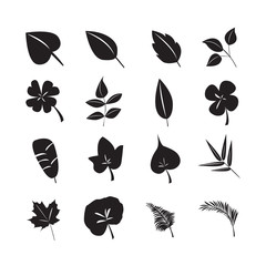 leaf icon vector set