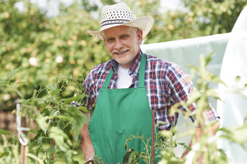 Portrait of male farmer on field