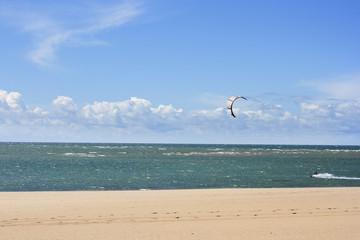 Kitesurf or Kiteboarding rider