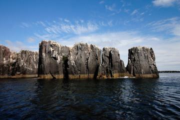 faleesia scogliera isole farne scozia
