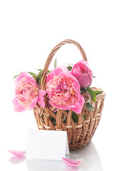 beautiful bouquet of peonies in a basket