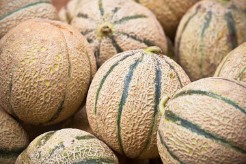 Ripe fresh melons pile in a market