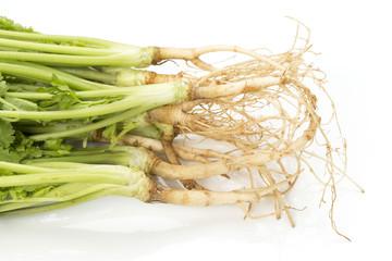 Corainder, Chinese parsley