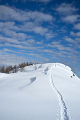 Snowshoes tracks on high mountain