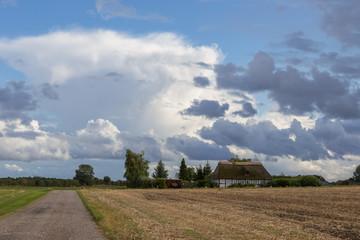 Ferienhaus im Feld