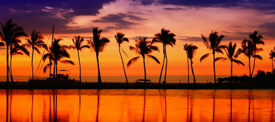 Travel banner - Beach paradise sunset palm trees