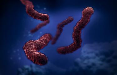 bacteria electron microscope image illustration