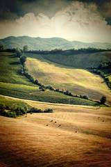 Vintage view of after harvest fields, Toscany, Italy