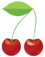 Two red ripe cherries on a shank