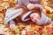 autumn beauty leaving leaf