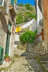 The tiny backstreet