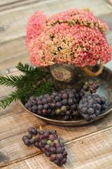 Trauben im Herbst mit Sedum