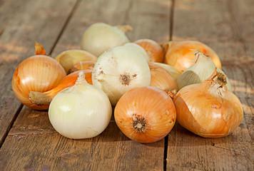 Ripe onion vegetable