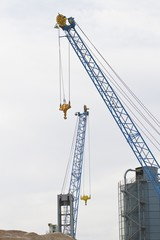 Blue crane in a construction site