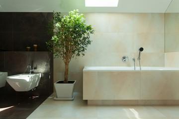 Minimalist modern bathroom in daylight