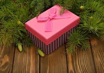 Pink box and green branches