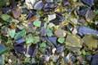 Bits of Glass - 70016188