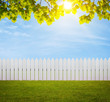 White wooden fence in the back yard with copy space