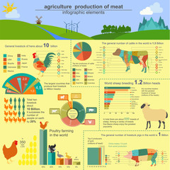 Agriculture, animal husbandry infographics, Vector illustrations