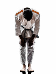 judoka fighter man silhouette saluting