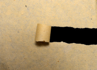 Torn Paper With Copyspace Inside