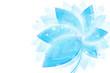 Obrazy na płótnie, fototapety, zdjęcia, fotoobrazy drukowane : Flowers 9