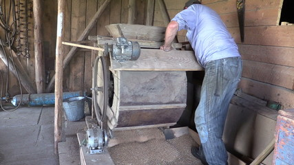 Farmer man spin handle of sifting machine and sift grain in mill