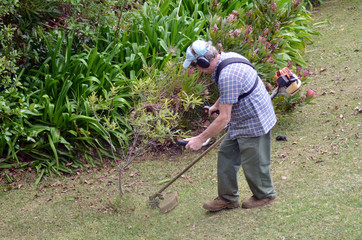 Gardner mowing the grass