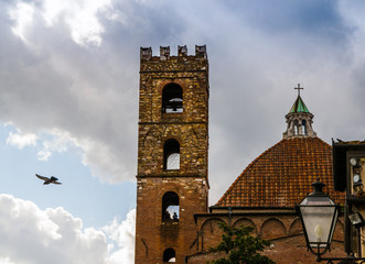Bell tower and bird