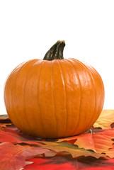 Autumn Pumpkin With Leaves Vertical Shot
