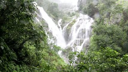 preto lorsu waterfall White heart in the forest
